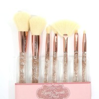 Beauty Creations Liquid Peach Sparkle Brush set